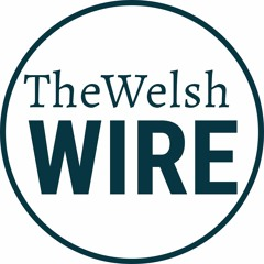 Ruther on The Welsh Wire: FBA Rightsizing Risk Series